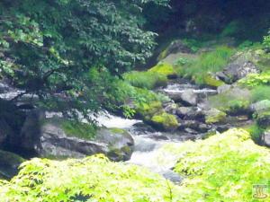 元泉館の2Fから見た赤川(上流方向)