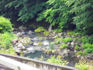 元泉館2Fから見た赤川(下流)
