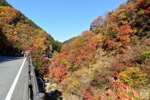 血洗川渓谷の紅葉