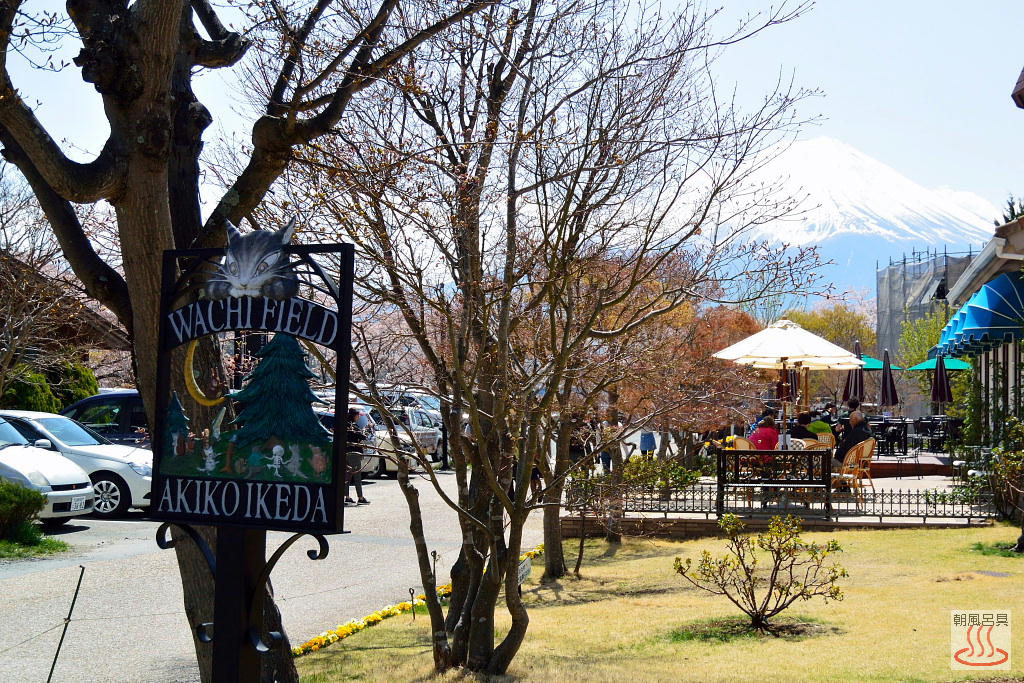 木ノ花美術館から見た富士山